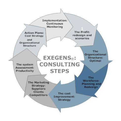 exegens consulting steps